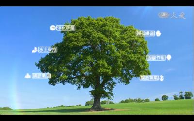森呼吸 護天地。翊聖企業